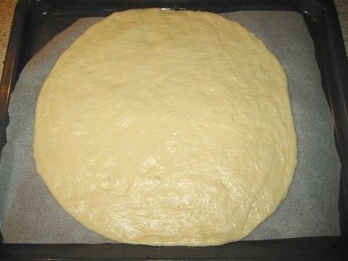 pizzaskuriceiigrib1