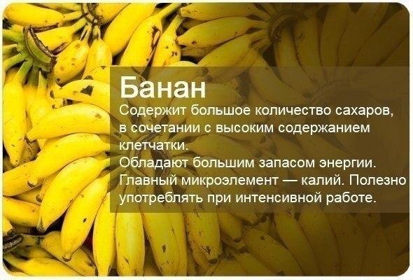 fructi1