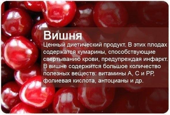 fructi4