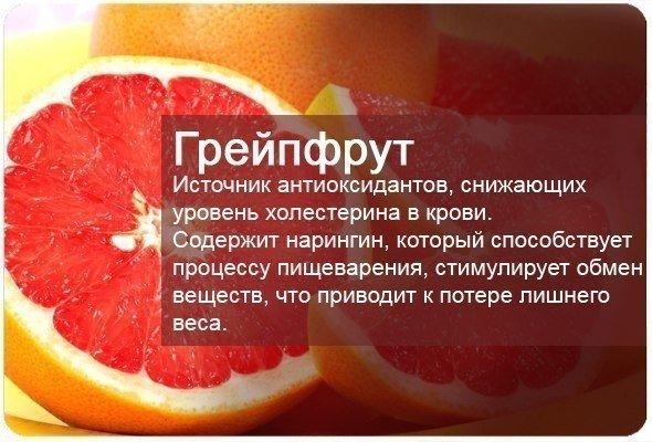 fructi9