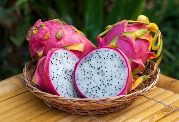 draconov fruct